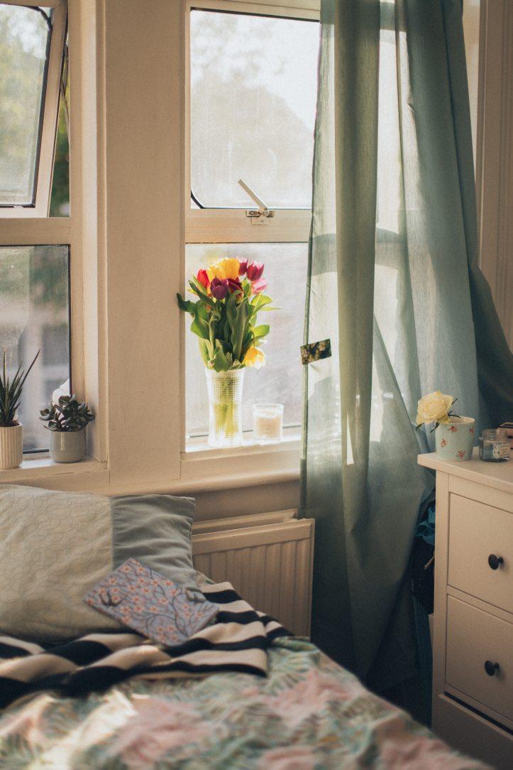 tulips-in-clear-vase-beside-window-2705740