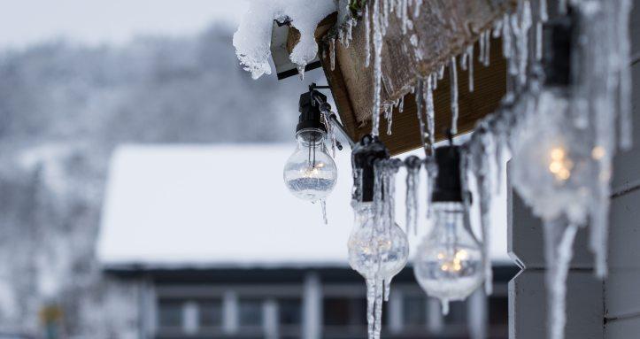 turned-on-clear-light-bulbs-818760 (1)